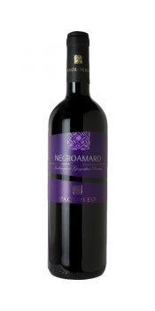 Negroamaro Salento igp Paolo Leo